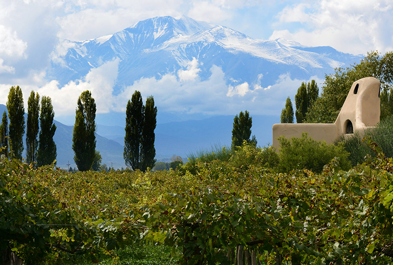 Wine Region Resorts