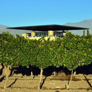 Aircraft Wing Design Over Winery