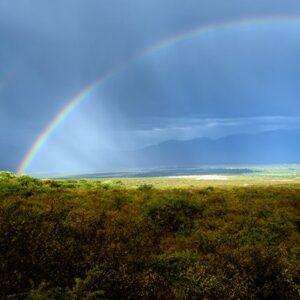 Double Rainbow Cafayate