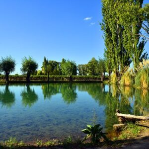 Beautiful Farmers Reservoir