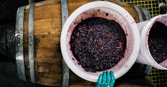Wine-Beer Hybrids are Making the Best of Two Worlds